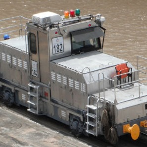 P_Canal_Mule_image